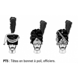 Têtes en bonnet à poil, officiers